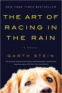 The Art of Racing in the Rain – Garth Stein –Review